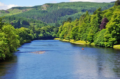 The river Tay in Dunkeld (eric robb niven) Tags: ericrobbniven scotland dundee dunkeld perthshire wildlife wildflower rivertay landscape cycling