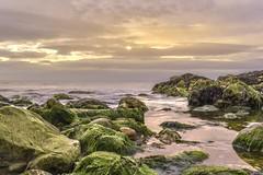 Gentle sunset (- A N D R E W -) Tags: sun color colorful nikon d5500 1855mm coastal seascape rock pool pastel