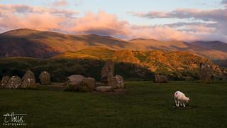 Summer Solstice Sacrificial Lamb