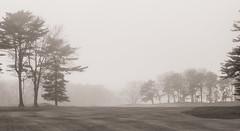 (jtr27) Tags: dscf8127xl jtr27 fuji fujifilm xe2s xtrans minolta md zoom 75150mm f4 f40 manualfocus fog landscape maine newengland proutsneck