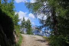 Ovronnaz (bulbocode909) Tags: valais suisse ovronnaz montagnes nature printemps arbres forêts mélèzes nuages paysages chemins vert bleu groupenuagesetciel