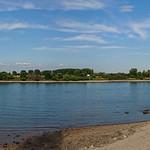 Rheinufer Am Hansenbusch in Ludwigshafen bei Niedrigwasser thumbnail