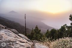 Sunset haze on the Teide (۞ Marco ۞) Tags: fa2035 sun landscape sunset k1markii tenerife haze pentax rocks parquenacionaldelteide parque nacional del teide
