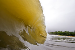 IMG_1024A (Aaron Lynton) Tags: hector hurricane hurricanehector waves shorbreak shorebreak maui hawaii ocean zones fun barrel barreling luckywelivehawaii