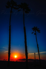 14 (morgan@morgangenser.com) Tags: sunset red orangeyellow blue pretty cloud silhouette sun evening dusk palmtrees bikepath sand beach santamonica pacificpalisades beautiful black dark cement amazing gorgeous inawe photobymorgangenser