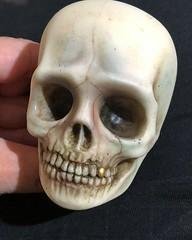 Rigormorta (Sadomina) Tags: doll bjd abjd balljointeddoll spiritdoll sadomina creepy skull dead undead decay creepydoll horror horrordoll macabre morbide darkart art surreal