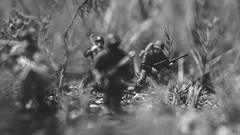 The Rookie (3rd-Rate Photography) Tags: wwii solider callofduty megaconstrux megabloks squad blackandwhite bw canon 50mm 5dmarkiii greencovesprings florida 3rdratephotography earlware 365