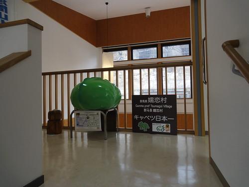 tsumagoi_20180303150223