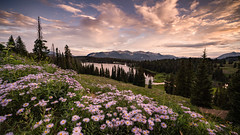 Crested Butte (Jeremy Duguid) Tags: crested butte colorado travel nature landscape mountain mountains wildflowers lake sunset dusk night evening summer beauty rockies flowers trees sony jeremy duguid