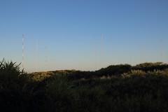 Towers of the VLF radio transmitter array (Paul Threlfall) Tags: grasses northwestcape wa westernaustralia vlfradiotransmitterarray navalcommunicationstationharoldeholt goldenhour dunes