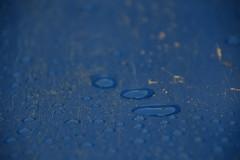 Blue and Raindrops I (Bad Alley (Cat)) Tags: playground charliewallpark hillsidebeach manitoba sandbox plastic playstructure colour colourful water rain rainwater miksang perception blue abstract