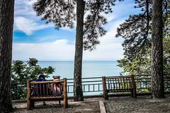 Break (Melissa Maples) Tags: batumi batum ბათუმი adjara აჭარა georgia gürcistan sakartvelo საქართველო asia 土耳其 apple iphone iphonex cameraphone მწვანეკეპი mtsvanecape ბოტანიკურიბაღი botanicalgarden blacksea sea water trees bench georgians women