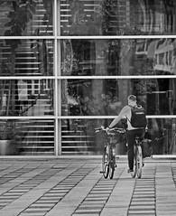 spare wheel (heinzkren) Tags: fahrrad bike velo street streetphotography geometry reserverad tandem schwarzweis blackandwhite sw bw monochrome panasonic lumix stpölten landhaus landhausviertel window regierungsviertel nö lower austria niederösterreich people sport man bicycle building outdoor fenster candid urban plants