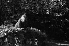 Juliette above (Karsten Fatur) Tags: portrait model bw blackandwhite havelock canada bridge summer sun light lighting nature forest
