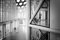 Centre Pompidou Metz (Fred Luckythirteen) Tags: canon powershot g7x rawtherapee gimp noir noirblanc noiretblanc black blackwhite monochrome metz moselle 57 lorraine france centre pompidou art moderne design