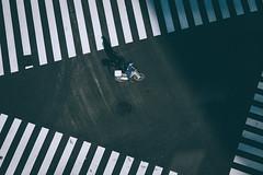 執勤時 Tokyo (里卡豆) Tags: tōkyōto olympus em10markiii 75mm f18 神之光 olympus75mmf18 japan kanto 關東 chūōku 日本 jp