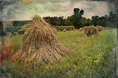 Straw Man (drei88) Tags: atmosphere energy haystack farm history memories awesome grain forlorn distressed aged weathered childhood light shadow life death loss searching vision imagination eerie moment