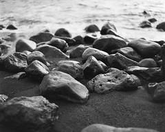 (xbacksteinx) Tags: pentax 67ii takumar105mm 105mm 120 medium format slr analog expiredfilm ilford panf 50 panf50 bw blackwhite january winter canary islands lanzarote beach stones sand water shallowdof wideopen mood moody