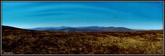""" And Keep Your Fancy Free "" ("" P@tH Im@ges "") Tags: mountains wicklownationalpark fancymountain aehouseman1892 ashropshirelad poem whitehillwicklowway blanketbog poetry walk wicklowway"