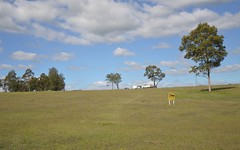 Lot 8 Lakes Folly Drive, Branxton NSW
