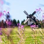 windmill in the countryside near Tahko thumbnail