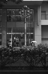 Untitled 20180616_9 (Satoshi Kondo) Tags: blackandwhite bnw bw blackandwhitephotography blackandwhitephoto bnwphoto bwphoto bnwphotography bwphotography blackandwhitepoto street streetphotography streetphoto streetsnap streets snap saturday japan filmphotography filmcamera filmphoto film leica leicaphoto leicaworld leicam3 m3 summicron monochrome