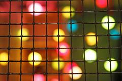 Macro Monday - Mesh (PDX Bailey) Tags: mesh macromonday macro monday bokeh christmas lights colorful red yellow blue green pattern geometric hmm