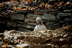 Hole-y Mary (Hi-Fi Fotos) Tags: religious mary mother virgin holy statue symbol ground hole stone wall rock leaves outdoor sigma nikon d5000 hififotos hallewell 18250mm