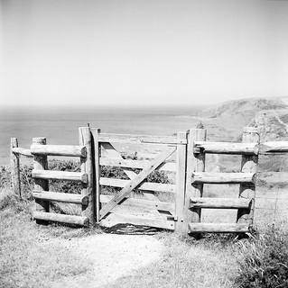 Gate, Duckpool