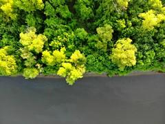 Border (Studio d'Xavier) Tags: border green trees drone uav