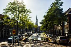 Delft #4 (j.kowalska) Tags: delft holandia nederland netherland city cityscape drzewa trees wieża most bridge kanał woda water samochody cars budynki building niceday sunnyday