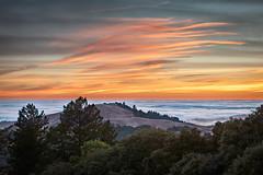 Foggy Sunset (Kirk Lougheed) Tags: audreysway california midpeninsularegionalopenspacedistrict russianridge russianridgeopenspacepreserve santacruzmountains usa unitedstates fog landscape marinelayer outdoor sky sunset