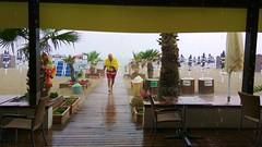 IMG_20180808_122720 - piove (molovate) Tags: piove tafme mare bagni isola delle femmine xiaomi redmi note3 pioggia fl itisraining palma spiaggia lido ombrellone bagnante persona