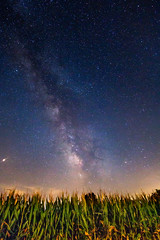 Celestial Beauty in a Tennessee Cornfield (jamespoundiv) Tags: stars milky way milkyway night sky corn cornfield astrophotography mars longexposure long exposure tripod planets galaxy galaxies universe blue tennessee country rural farm