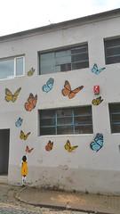 Carlisle Street Art (koothenholly) Tags: tabby carlisle bushbrow butterflygirl