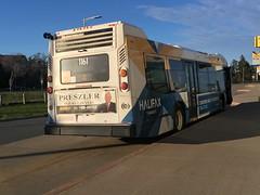 Dusk (The Halifax Transit Fan!) Tags: raggedlakebus lacewoodbusterminal hfxtransit1161 lacewoodterminal publictransit canadiantransit hfxtransitroute4 halifaxtransit novabuslfs