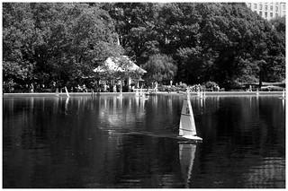 Runaway Sailboat