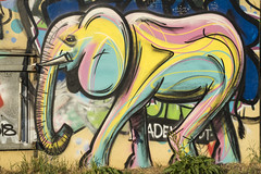 Psychodelephant (unnamedcrewmember) Tags: hannover linden limmer elefant elephant grafitti grafitto street art psychedelic colorful bunt