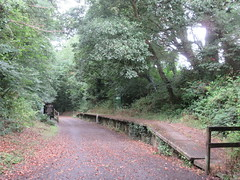 Photo of Camel Trail, Cornwall