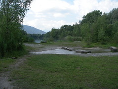 IMGP3421 (barfuss15) Tags: schweiz österreich diepoldsau alterrhein sommer summer oldrhine schwimmen badeslip wasser warm alpenrheintal