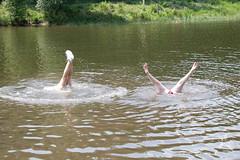 180610 Elfenshoot-1467 (Jokie_Pokie_fotos) Tags: constance elvenshoot jokevanruiten kootwijk