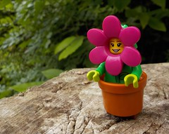 It's nice being a flower (Lego Custom Zone) Tags: lego minifigs minifigure toy toys flower pot water rain eco green plants friendly tree soil wood