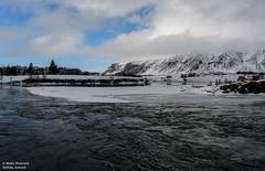 Iceland 2018 (Robin Hickmott) Tags: selfoss iceland is