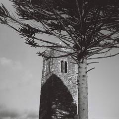 Hill of Slane, Co. Meath (Frank Milling) Tags: irish ireland meath slane bw black white rollei retro 80s agfa isoly 2a iia nature countryside lomo lomography film analog analogue rollfilm 120 medium format sky