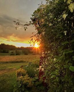 ~ sunset ~ Riddarhyttan Sweden