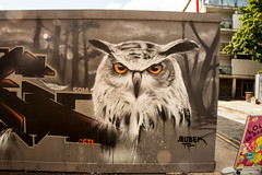 Qubek Owl (PDKImages) Tags: streetart manchesterstreetart posterart urbanart street scene manchester