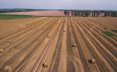 Harvest (free3yourmind) Tags: harvest hay bales belarus field quadcopter xiaomi mi drone
