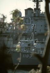 HMAS Ibis (eastwoodgeoff) Tags: hmas ibis ran royal australian navy