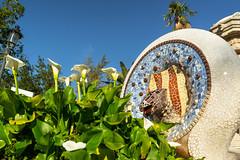 Garden Form (fate atc) Tags: antonigaudi barcelona carmelhill catalonia euselaguell parcguell parkguell pavilion spain architecture art building ceramics design entrance garden inlay modernist moldings mosaic