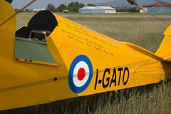 IMG_3983 (The Aviation) Tags: volovienne dannunzio theaviation boscomantico tigermoth spad sva impresa